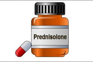 Prednisolon uten resept